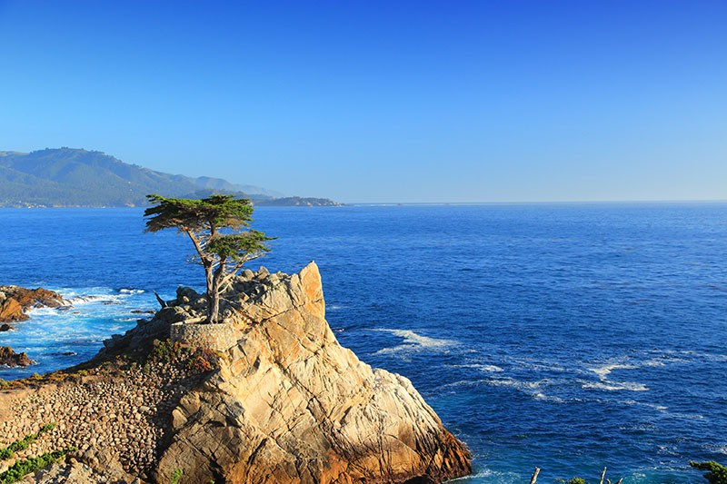 The Lone Cypress - Pebble Beach near Monterey