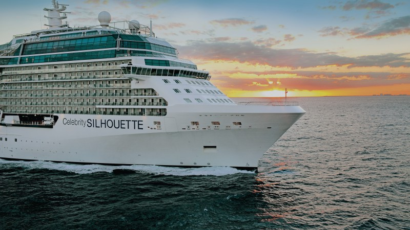 Cruise ships around the world