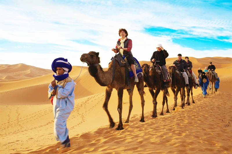Gate 1 Travel - Camel ride on escorted tour