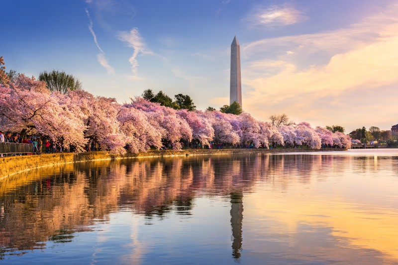 Spring Has Sprung Where To Travel This Season