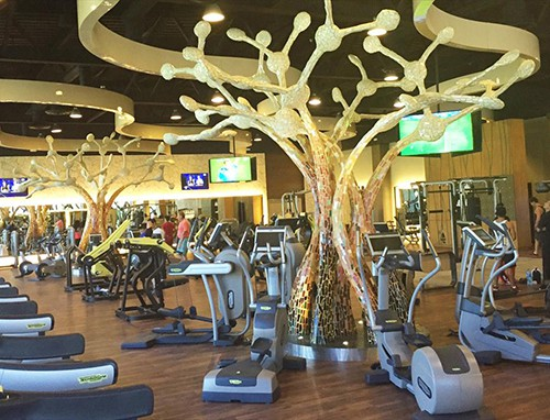 Gym at Barcelo Maya Colonial